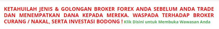 brokerforex.com